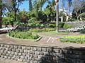 Madeira em Abril de 2011 IMG 1777 (5663221329).jpg