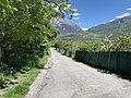 Mai 2021 - Chemin sous le Roc (Embrun).jpg