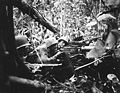 Marines Browning M1917 Cape Gloucester.JPEG