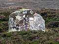 Marked erratic by Uisge Labhair - geograph.org.uk - 265952.jpg