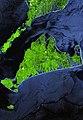 Marthas vineyard from space.jpg