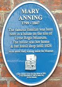 Oval blue plaque mounted on brick wall that says that Anning was born in house that used to be at this site