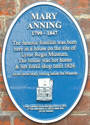 Mary Anning - Blue plaque where Mary Anning was born and had her first fossil shop, now the Lyme Regis Museum