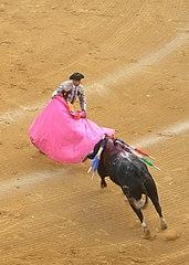 Matador bullfight.JPG