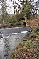 Meanwood Beck, Leeds - geograph.org.uk - 306343.jpg
