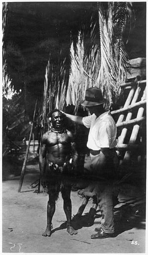 Sepik - Australian anthropologist Ernest Chinnery, at work in the middle Sepik