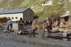 Mine charbon Santa Cruz del Sil avril 1983-b.jpg