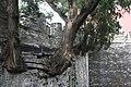 Ming Tombs (9863760415).jpg