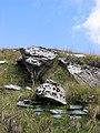 Monte Generoso 09-2008 - panoramio - adirricor (5).jpg