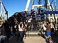 Montu at Busch Gardens Tampa Bay 12.jpg