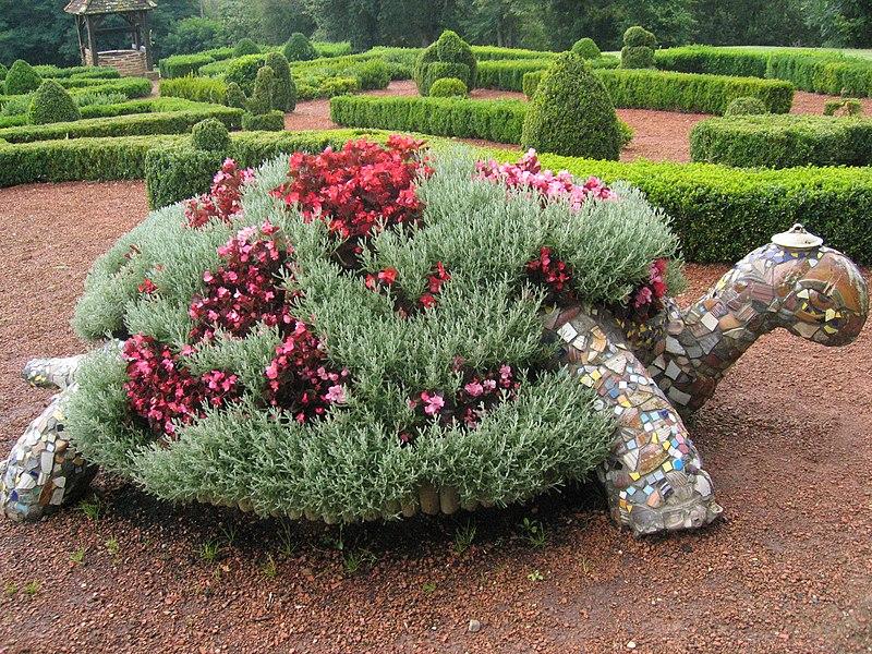 Wenn Pflanzen Umziehen Müssen: Richtig Umtopfen | Mein Bester Florist Tipps Umtopfen Zimmerpflanzen