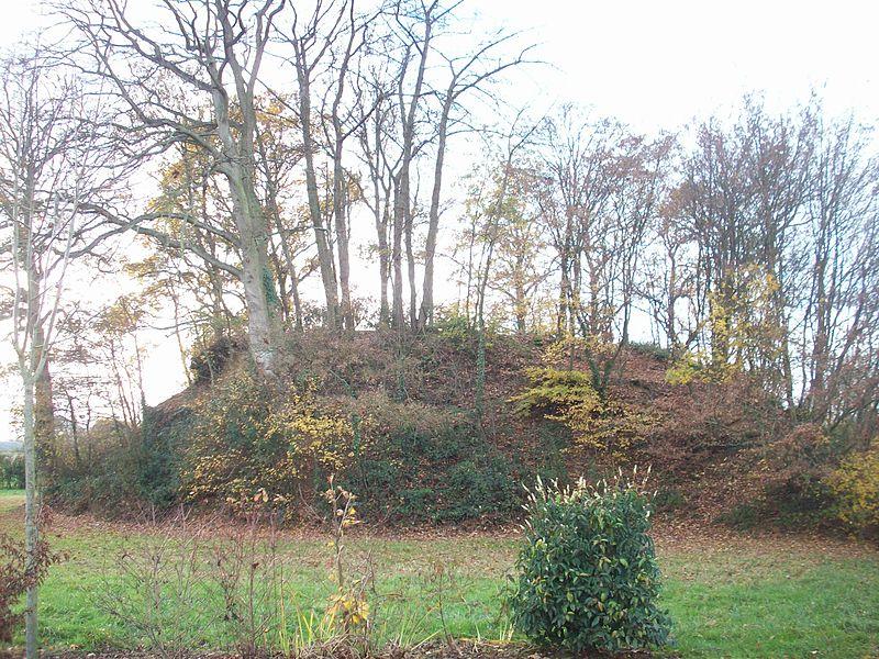File:Motte féodale de Bois-Arnault.JPG
