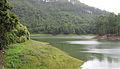 Munnar - views from Munnar (35).jpg