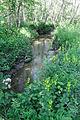 Murnauer Moos-bjs110704-04.jpg