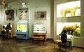 Museum Mensch und Natur 15.jpg