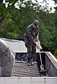 Mutirão de combate ao mosquito Aedes Aegypti na Base Aérea de Brasília (24600225951).jpg