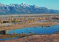 NRCSWY92007 - Wyoming (6939)(NRCS Photo Gallery).jpg