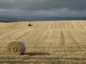 Geograph Britain and Ireland - Typical rural geograph image