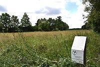 NSG Kammereckswiesen und Herchwiesen von Langen01.jpg