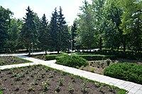 Naddniprianske Arboretum of Agriculture Institute of Southern Region 15 (YDS 2289).jpg