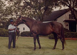 Nashua (horse) - Image: Nashua & Clem Brooks