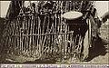 National Archives UK - CO 1069-26-22DetaiPig styelPorcherie.jpg