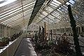 National Botanic Garden,Dublin,Ireland - panoramio (44).jpg