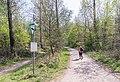 Naturschutzgebiet Königsdorfer Forst-7307.jpg