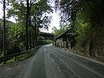 Nebenbahn Wenholthausen-Finnentrop (5777674853).jpg