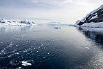 Neko Harbour Antarctica (47284370962).jpg