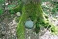 Neuenkirchen (LH) - KL - Dialog (CV) 08 ies.jpg