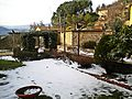 Neve nel giardino a Filettole.jpg