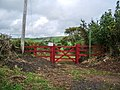 New gate - geograph.org.uk - 564933.jpg