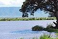 Ngorongoro 2012 05 30 2661 (7500971444).jpg