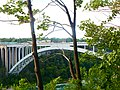Niagara Falls State Park (19012931056).jpg