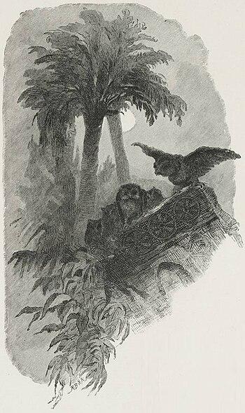 English: Two owls among the palm trees.