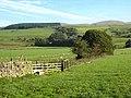 Nithsdale and Ryehill Farm - geograph.org.uk - 1004158.jpg