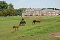Nordkirchen-090806-9410-Pferde-vor-Westfluegel.jpg
