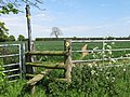 Not the Weald Way Footpath ^^^ - geograph.org.uk - 1301324.jpg