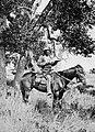 O'Sullivan, Timothy H. - Ein Kundschafter der Coyotero Apachen (Zeno Fotografie).jpg