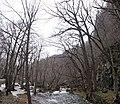 Oisase stream , 奥入瀬渓流 - panoramio (20).jpg