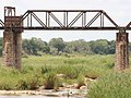 Old steel railway bridge over Sabie river - panoramio.jpg
