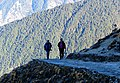 On the Trail to Tungnath, Uttarakhand, India 2013.jpg