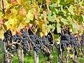 Osterfingen 13.10.2008 13-19-11.jpg