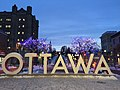 Ottawa sculptural sign.jpg