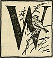 Our winter birds, how to know and how to attract them (1918) (14726573496).jpg