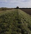 Ouse embankment - geograph.org.uk - 1521396.jpg