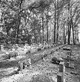 Overzicht begraafplaats - Nieuwkuijk - 20334861 - RCE.jpg