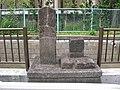 Oyamado (Aoyamadori) -08.jpg