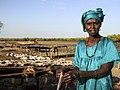 Pêcherie traditionnelle, salaison du poisson par une femme de Joal Fadiouth, Sénégal.jpg